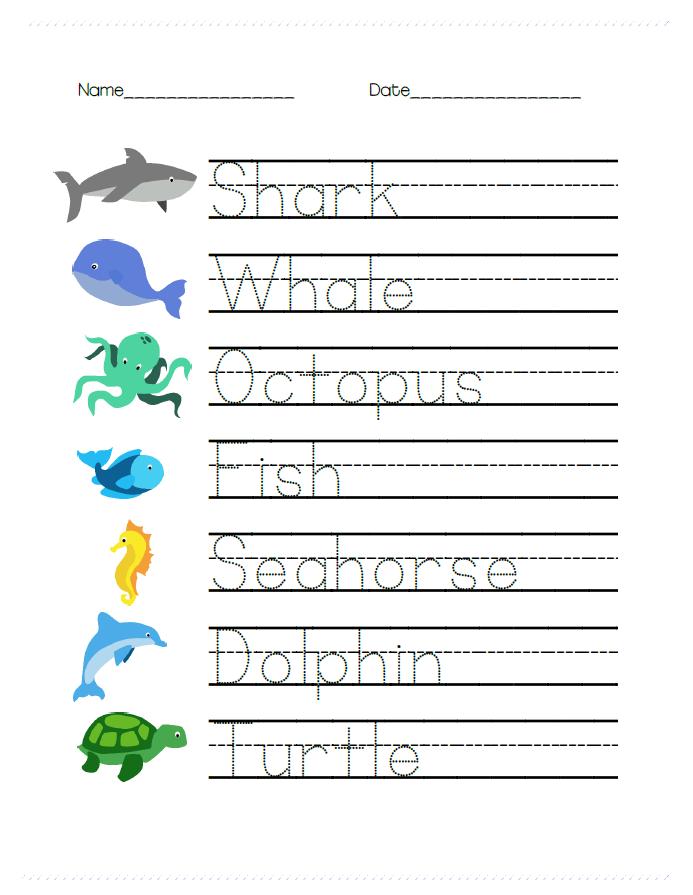 ocean animal math and writing worksheets for prek cookies racecars. Black Bedroom Furniture Sets. Home Design Ideas